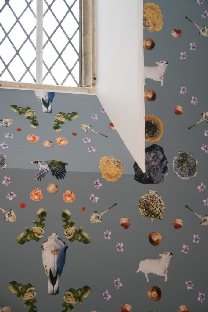 Handcut out wall paper, birds, nuts and lichen on a blue background